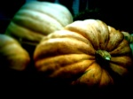 Massive Pumpkins, Tunbridge Fair