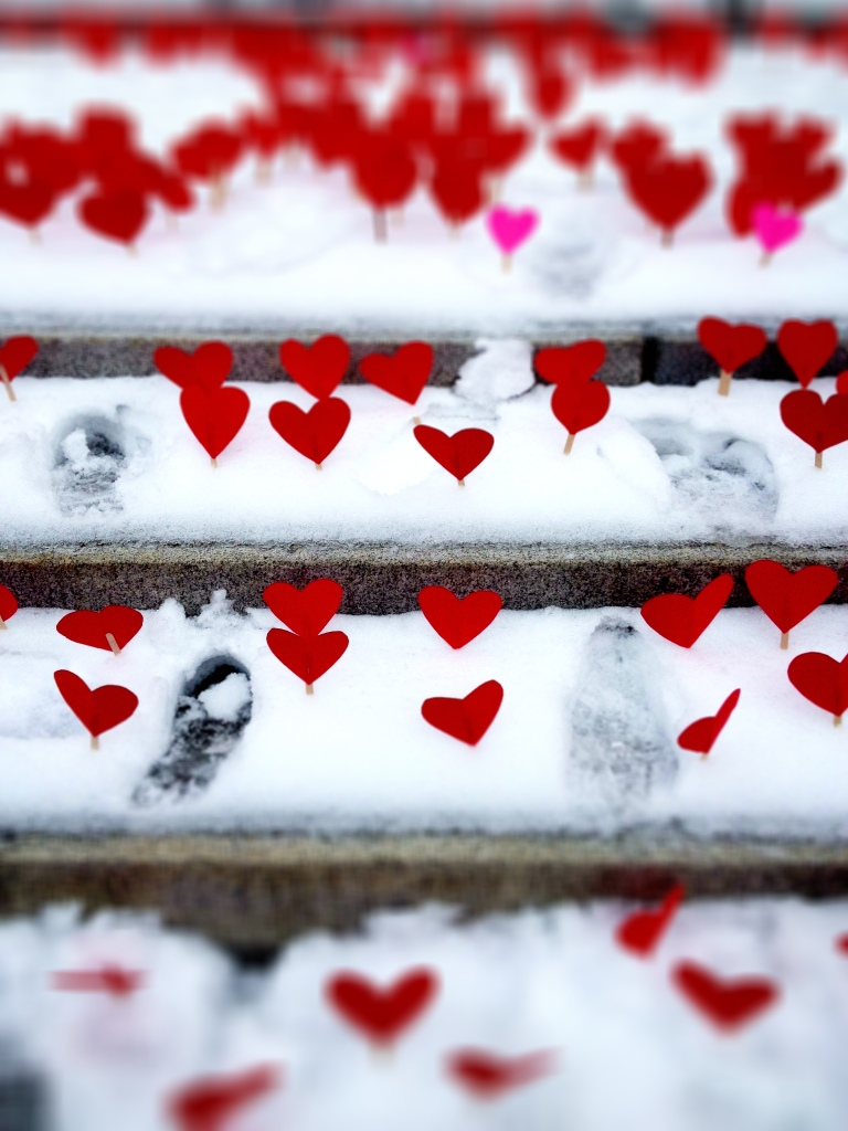 Detail, Hearts in the Snow, Steps of the Vermont State House, Montpelier.
